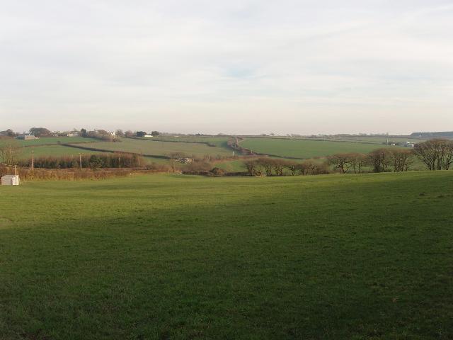 Pasture at Burford