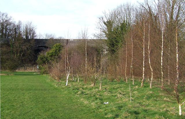 Birchlings and Bridges, Wolverhampton