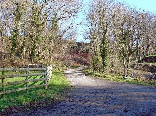 Small quarry at Felinfach, near Cardigan