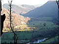 SN7178 : The Rheidol Valley, looking eastwards from Rheidol Falls Station by John Lucas