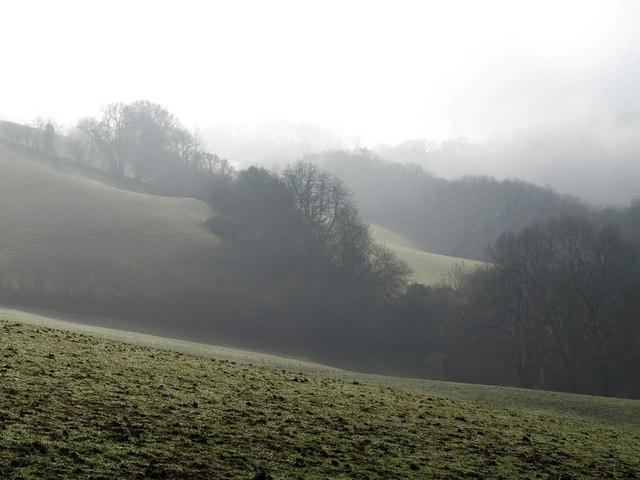 Misty fields below Haldon ridge