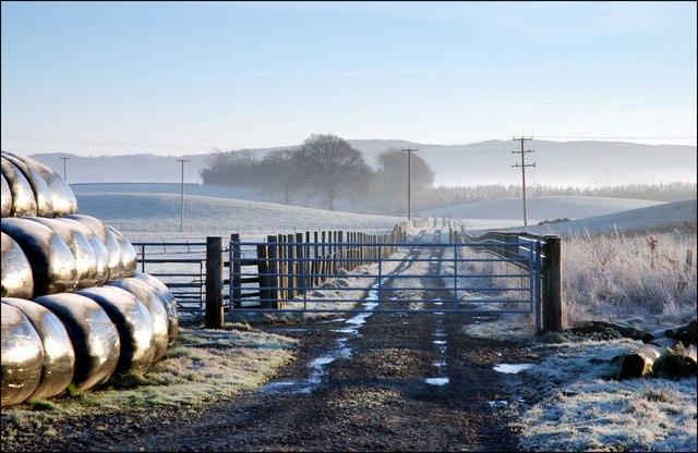 Farm track - leading towards Lochrutton