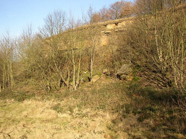 Old quarry, Tong Royd, Elland
