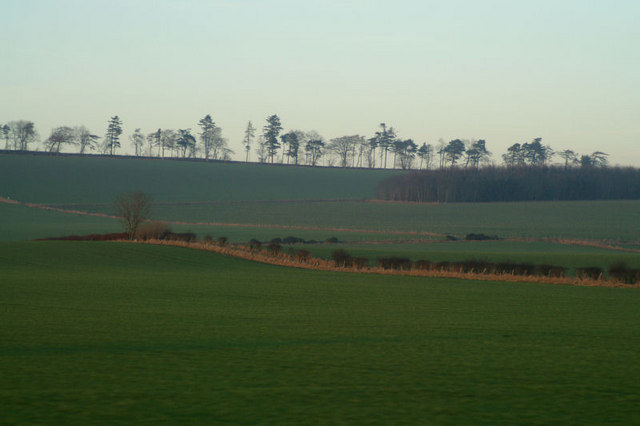 Fields west of Brechin