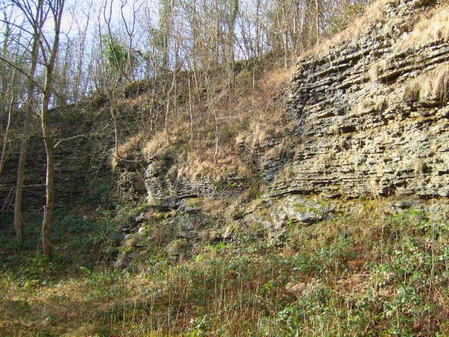 Knowle Quarry