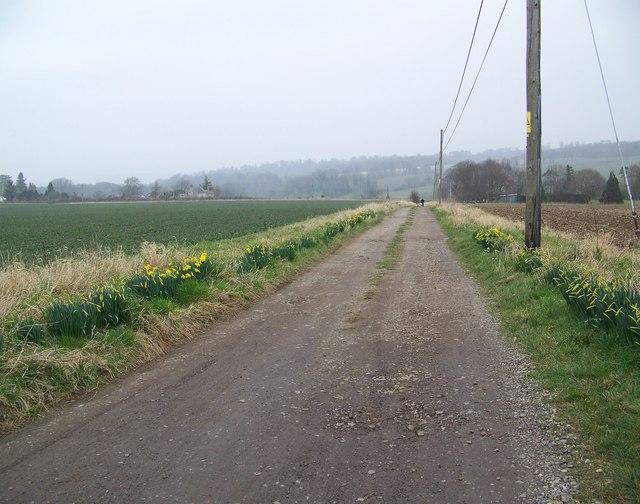 Drive to Weaveland Farm, Tisbury