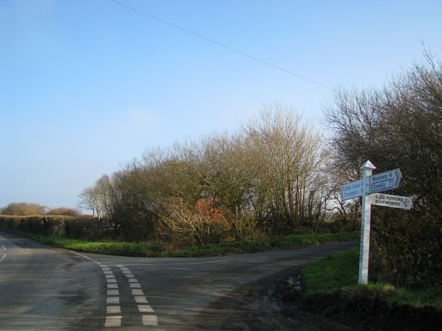 Common Moor Cross