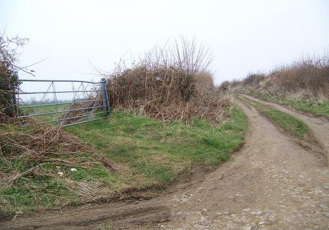 Footpath towards Fonthill Bishop