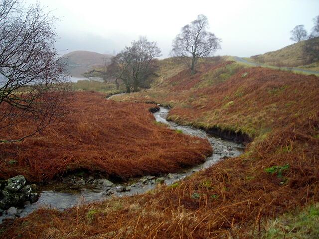 A Burn Running Down to Loch Katrine