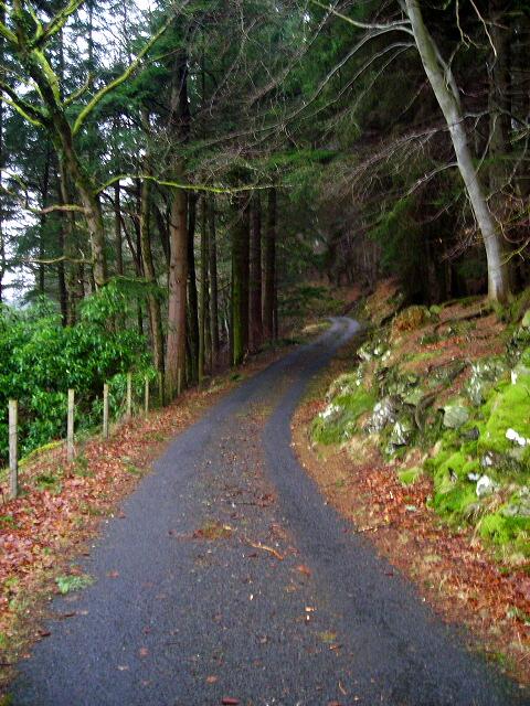 Road Along North Side of Loch Katrine
