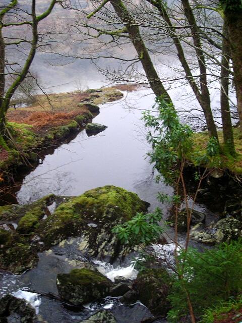 A Small Burn Flowing into Loch Katrine