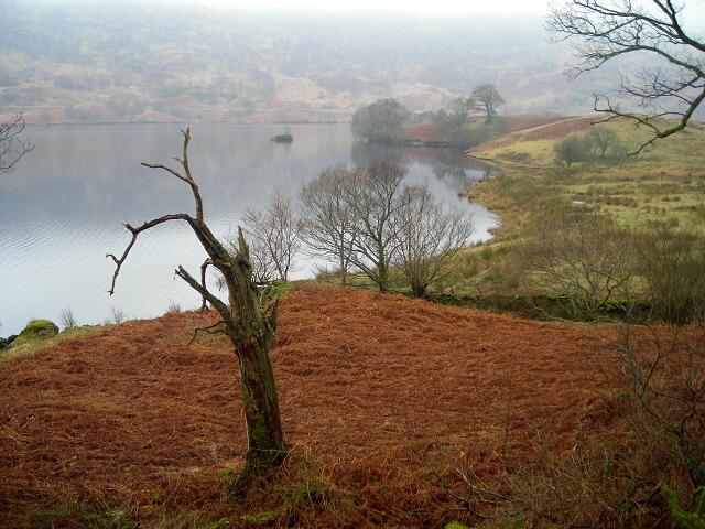 Loch Katrine Shoreline