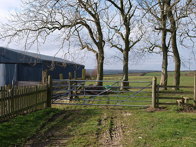 Trees and barn, East Barnby