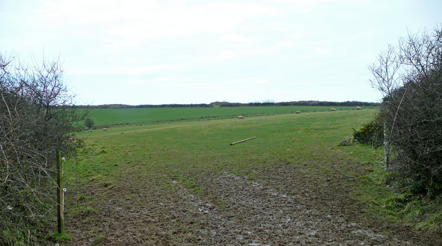 Pastures next to Treroosel Road