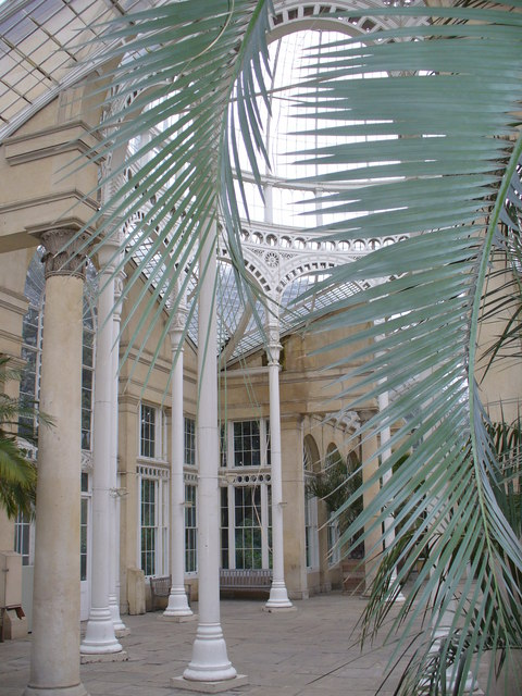 Inside the Great Conservatory