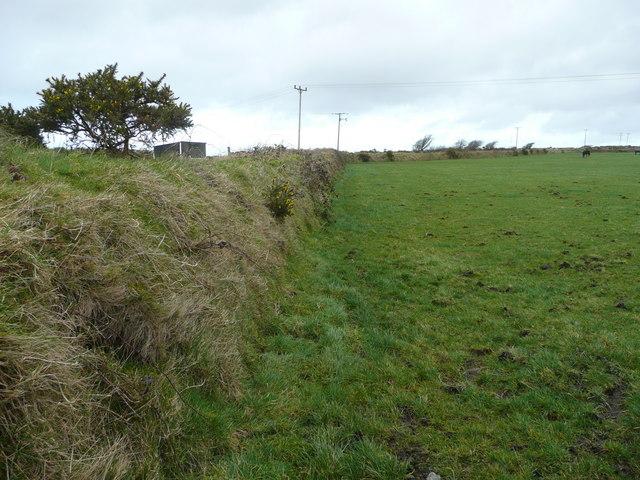 Pastures east of Moorgate Farm