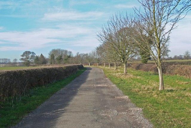 Driveway to Lea Grange Farm