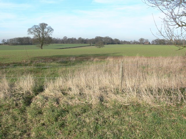 Countryside near Twycross, Leicestershire