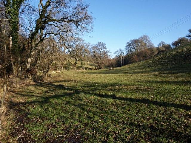 Batt's Brook valley