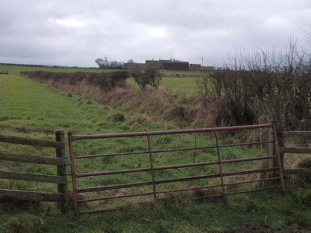 Farmland near Brockrigg Farm