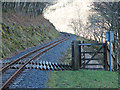 SN7078 : Vale of Rheidol Railway, Foot Crossing by John Lucas