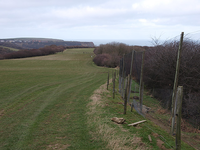 Ridge between Barnby Dales and Widgey Toft