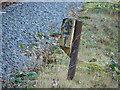 SN7078 : 9¼ Milepost, Vale of Rheidol Railway by John Lucas
