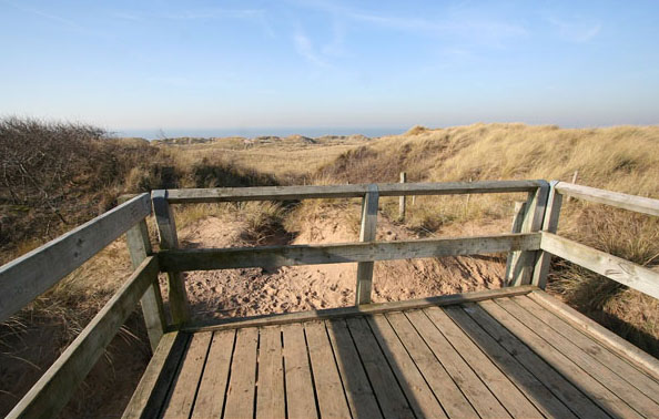 Dunes from viewing platform