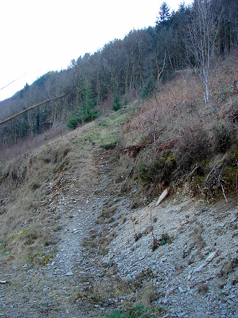 Steep climb to Rheidol Falls station