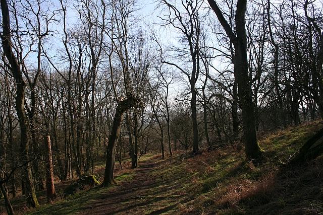 Path on Midsummer Hill