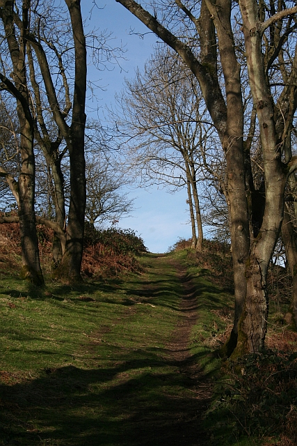 Path to the North Gate, Midsummer Hill