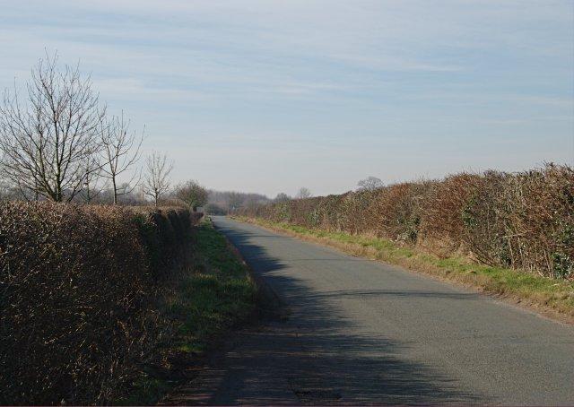 Daisy Lane, near Alrewas