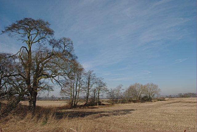 Fields of stubble near Alrewas