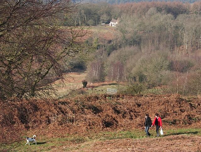Iron Age Rampart, Midsummer Hill