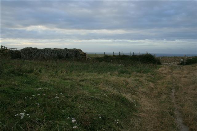Ruined farm building, Kelsey Head