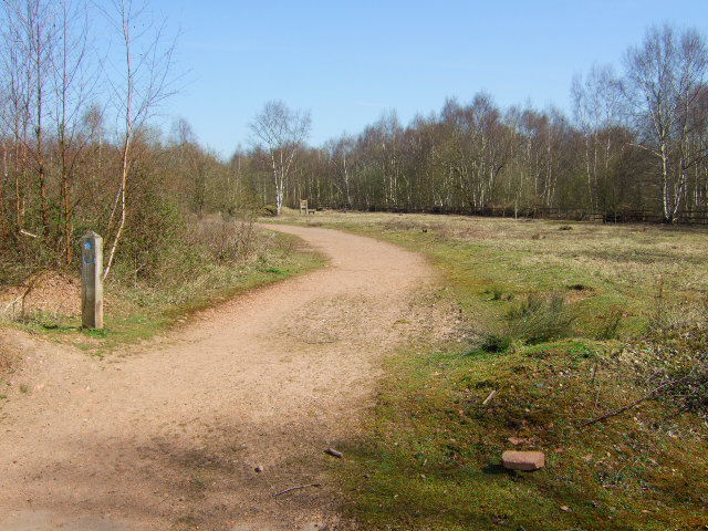 Country park track