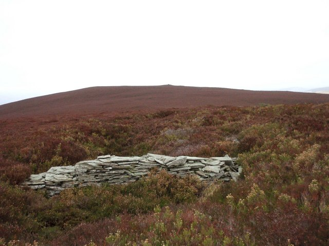 A drystane structure on the ridge of Gallow Hill