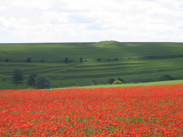Poppies and Tumulus
