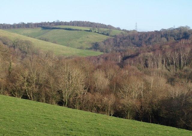 North Copse and the upper Batt's Brook valley