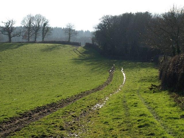Doddiscombsleigh Footpath 2