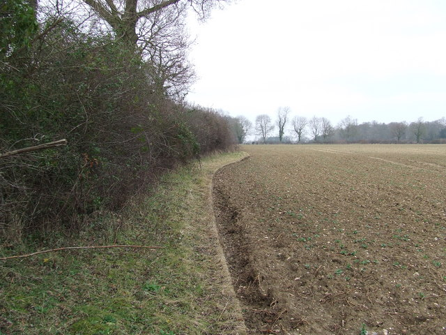 Bend in hedge