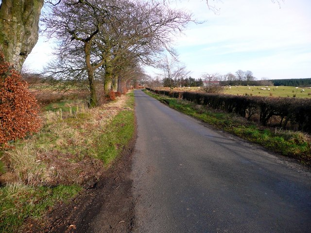 The road to Hareshawmuir