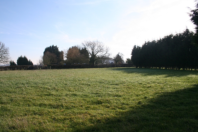 Hedged Field