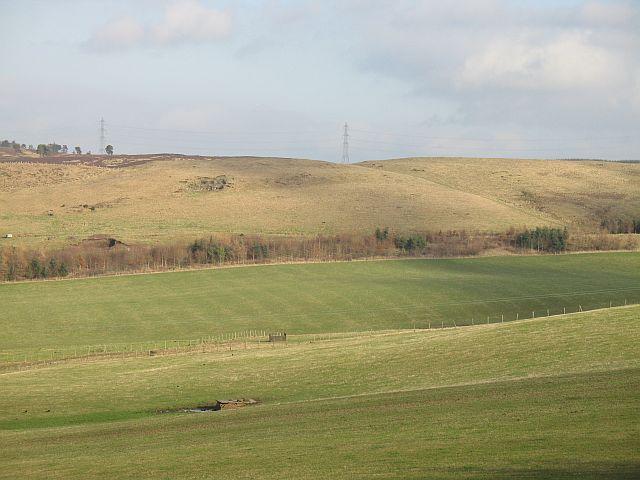 Rossie Ochill fields