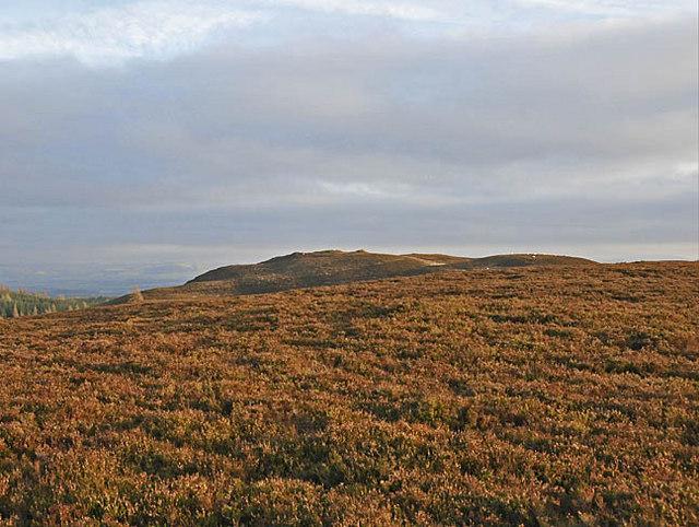 On Lurgan Hill