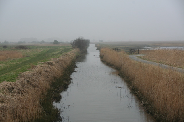 Westwood marshes in the mist