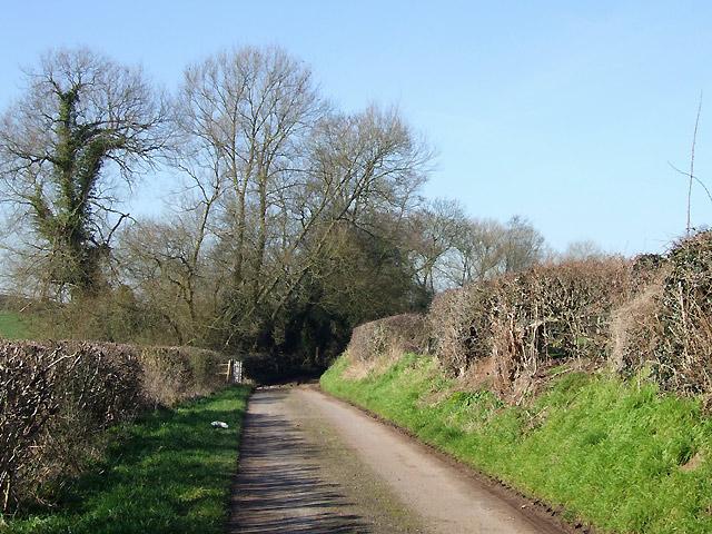 Pleasant Country Lane to Upper Aston, Shropshire