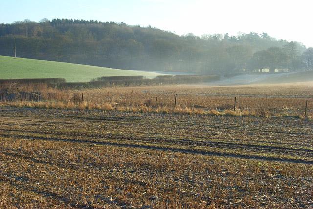 Farmland, Fosbury