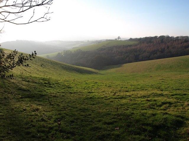 Head of the Batt's Brook valley