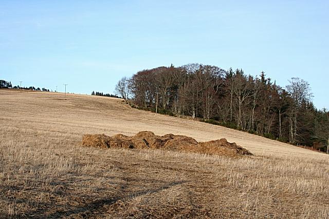 Field on Catstone Hill